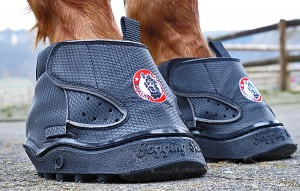 Equine Fusion All Terrain